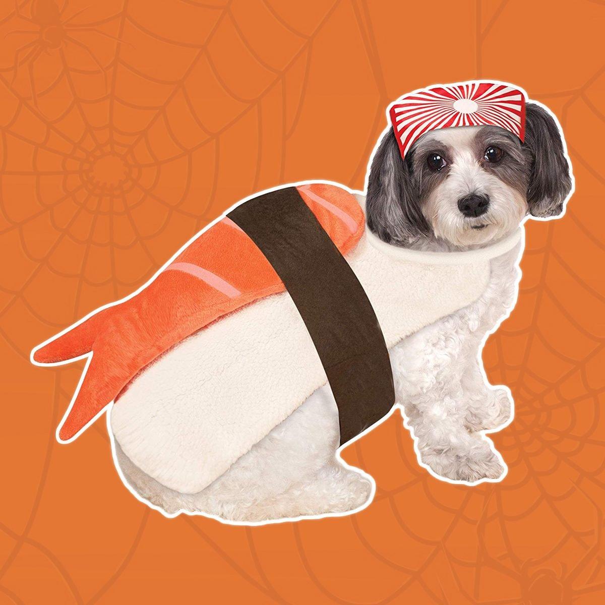 Sushi puppy