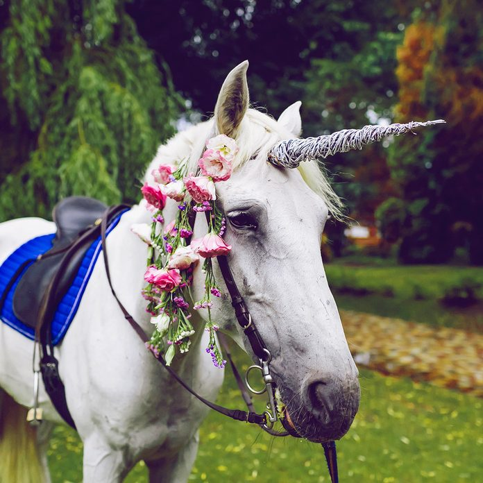 Horse dressed as a unicorn with the horn. Ideas for photoshoot. Wedding. Party. Outdoor; Shutterstock ID 684581434