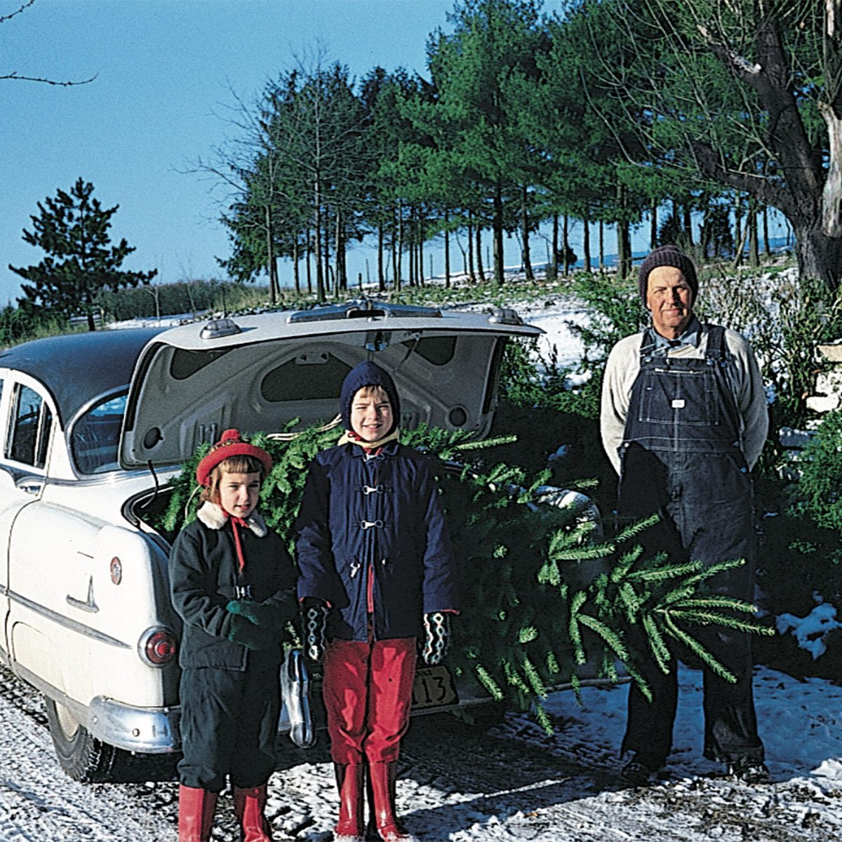 Family posing in front of the Christmas tree loaded into their truck