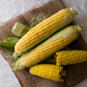 Set of raw and boiled corn on a sackcloth and on a white background.