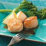 Scallops with Citrus Glaze