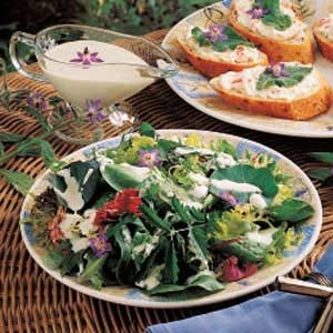 Borage Cucumber Salad Dressing