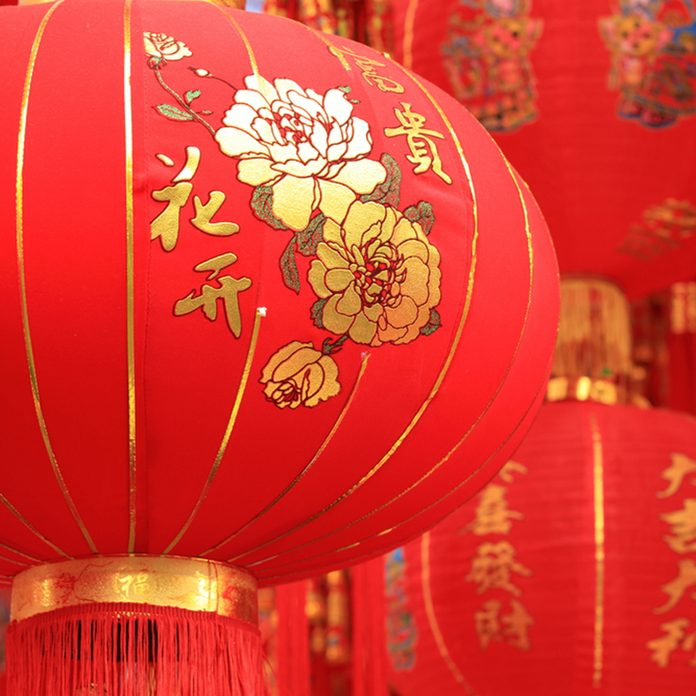 chinese red lantern ,words mean best wishes and good luck for the coming chinese new year; Shutterstock ID 254478529