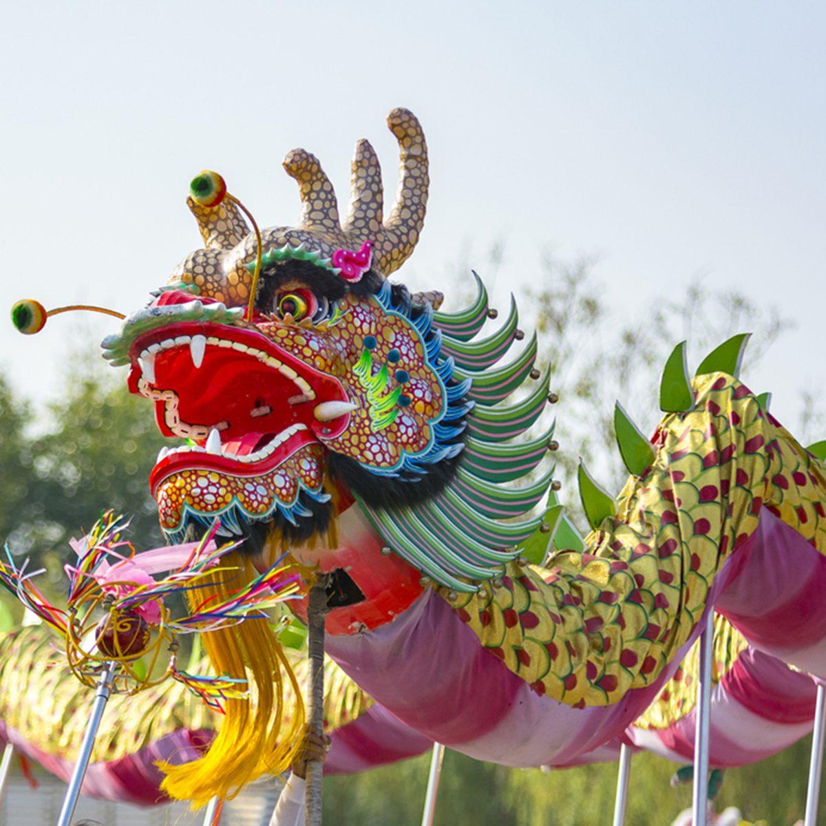 Dragon dance show in the festival procession Thailand.; Shutterstock ID 495213295