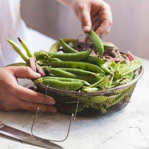 Fresh peas in a pod pea beans healthy trend food vegetable summer sping day