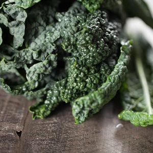 Macro shot of freshly washed bunch of green kale dark background