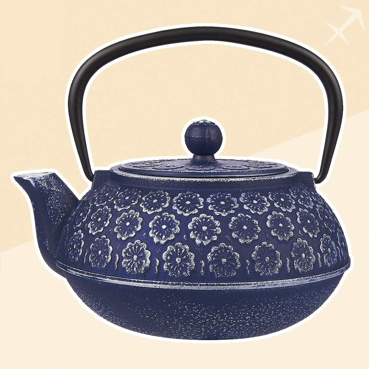 Sagittarius japanese tea kettle