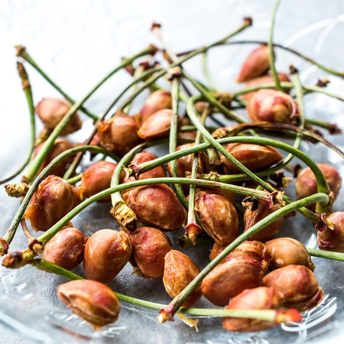 Cherry Seeds with Stalks / Fruit Garbage