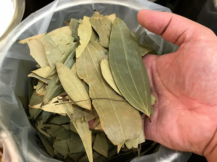 Bay Leaf. Bay leaf refers to the aromatic leaves of several plants used in cooking. These include: Bay laurel. Fresh or dried bay leaves are used in cooking for their distinctive flavor and fragrance