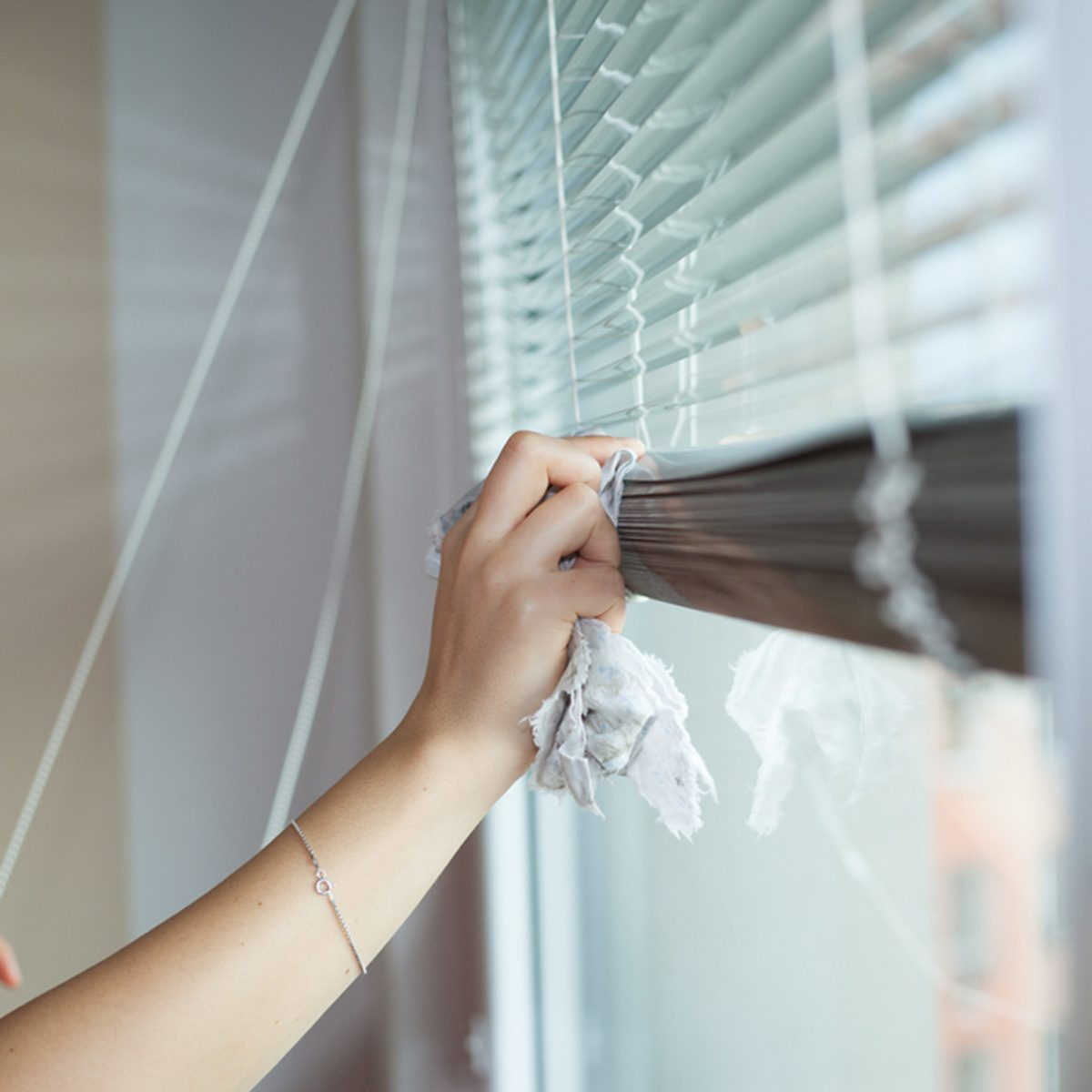 Hand of young woman cleaning blinds by cloth; housework (vignette); Shutterstock ID 506189770; Job (TFH, TOH, RD, BNB, CWM, CM): Taste of Home