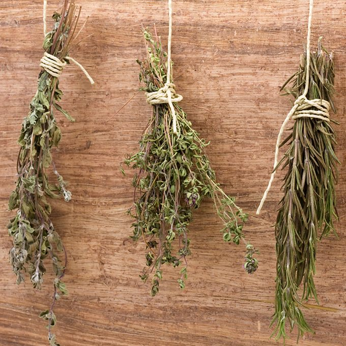 Fresh dried herb bundles of different herbs hanging on the wall