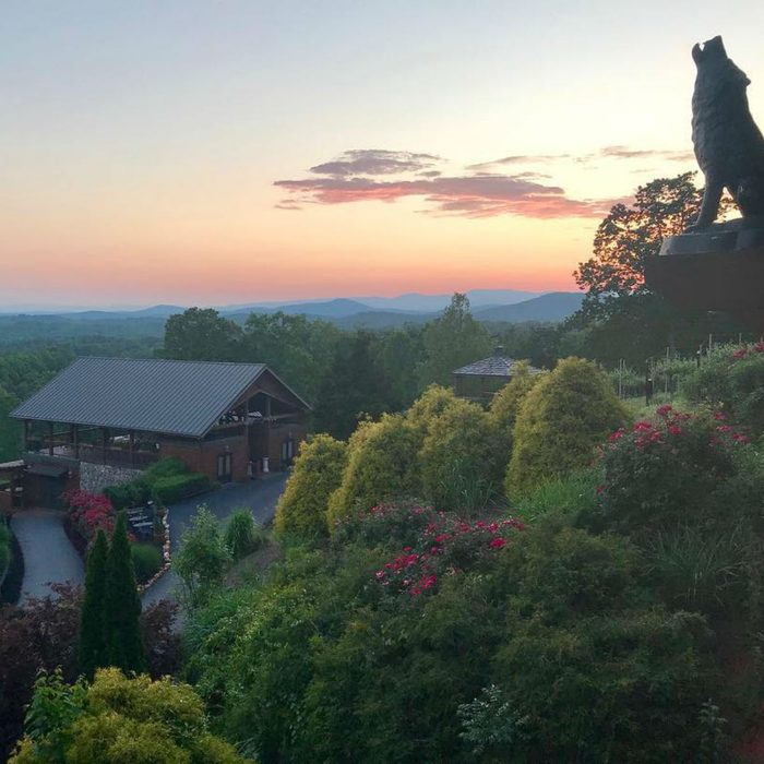Wolf Mountain Vineyards at sunrise