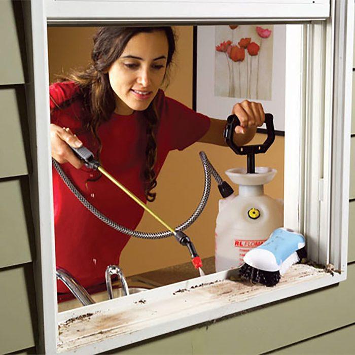 Woman spraying the windows