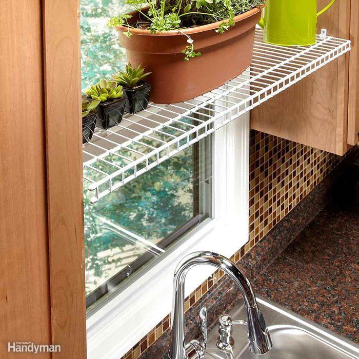 Plants on wire shelf