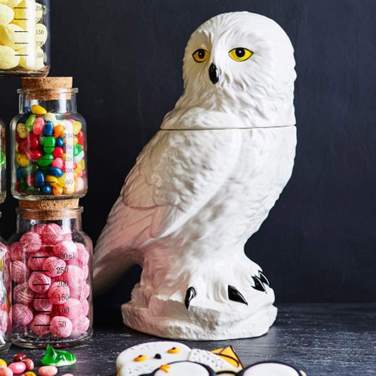 HARRY POTTER™ Hedwig Cookie Jar