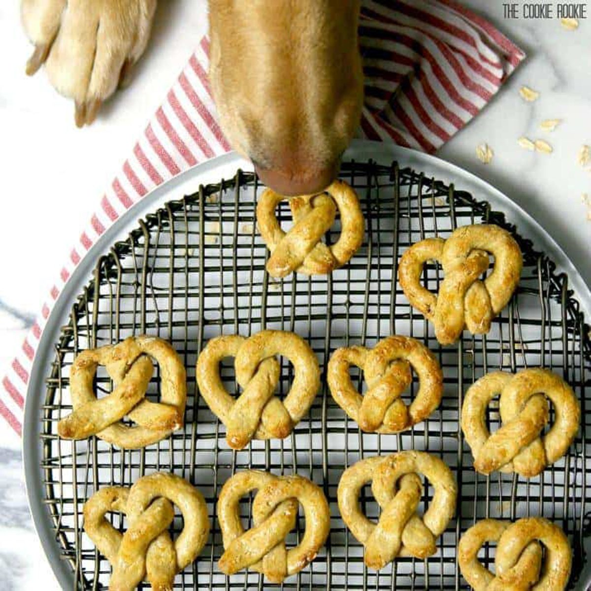 Oat and Apple Dog Pretzel Treats
