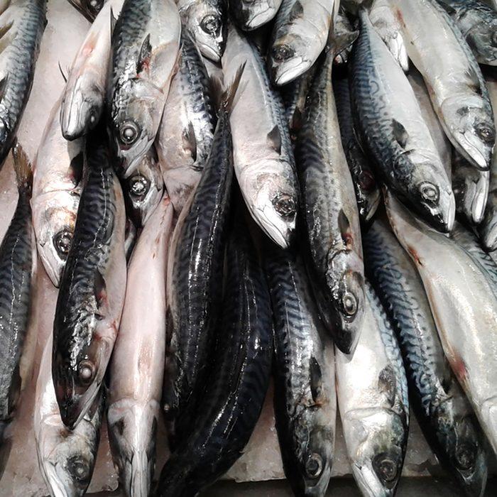 Fresh mackerel fish at the market.