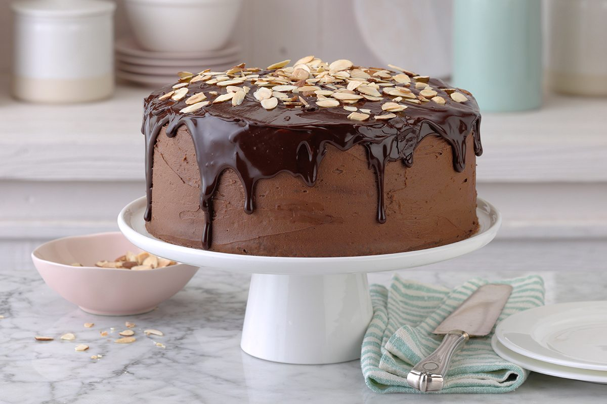 Special occasion chocolate cake
