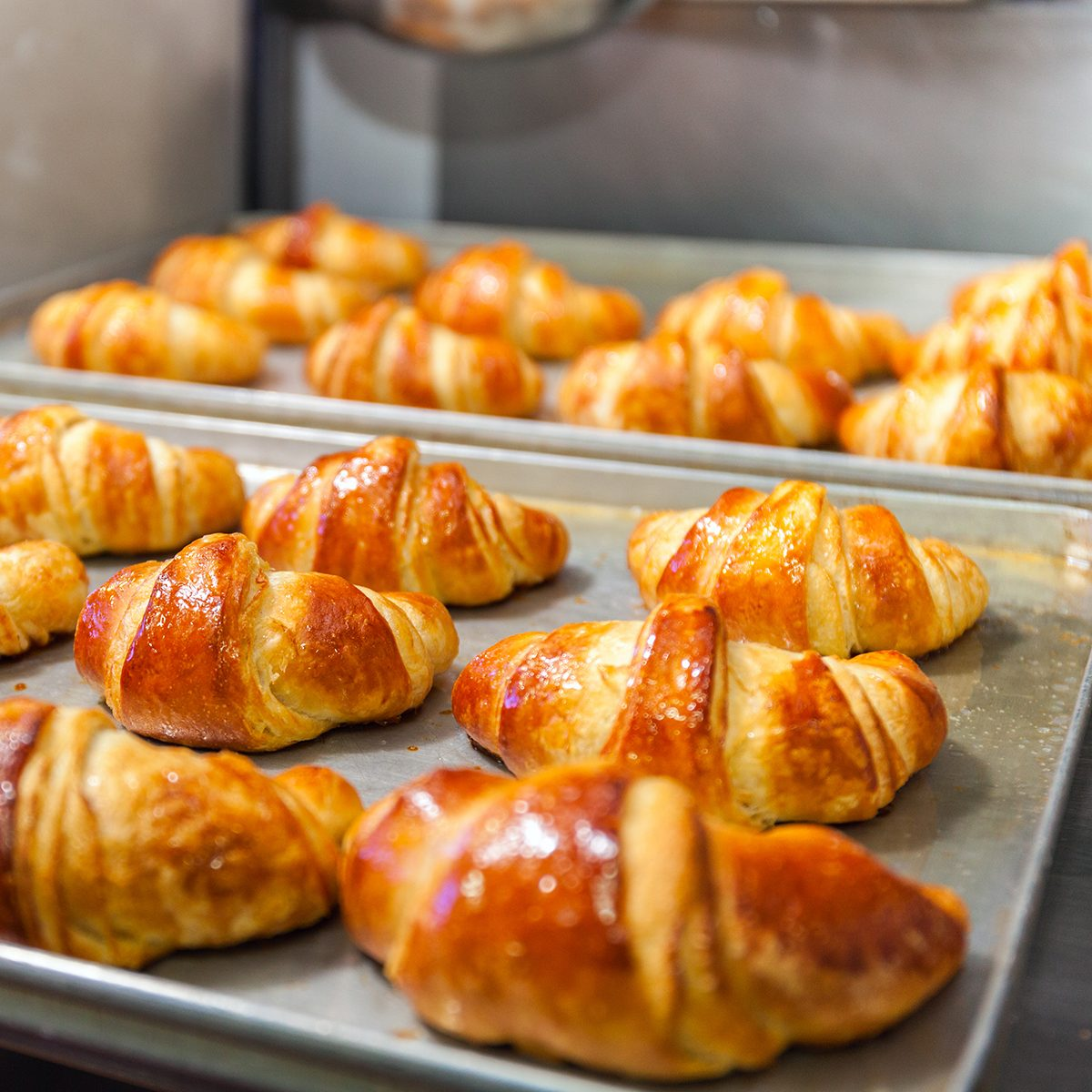 Fresh baked croissants on baking sheet