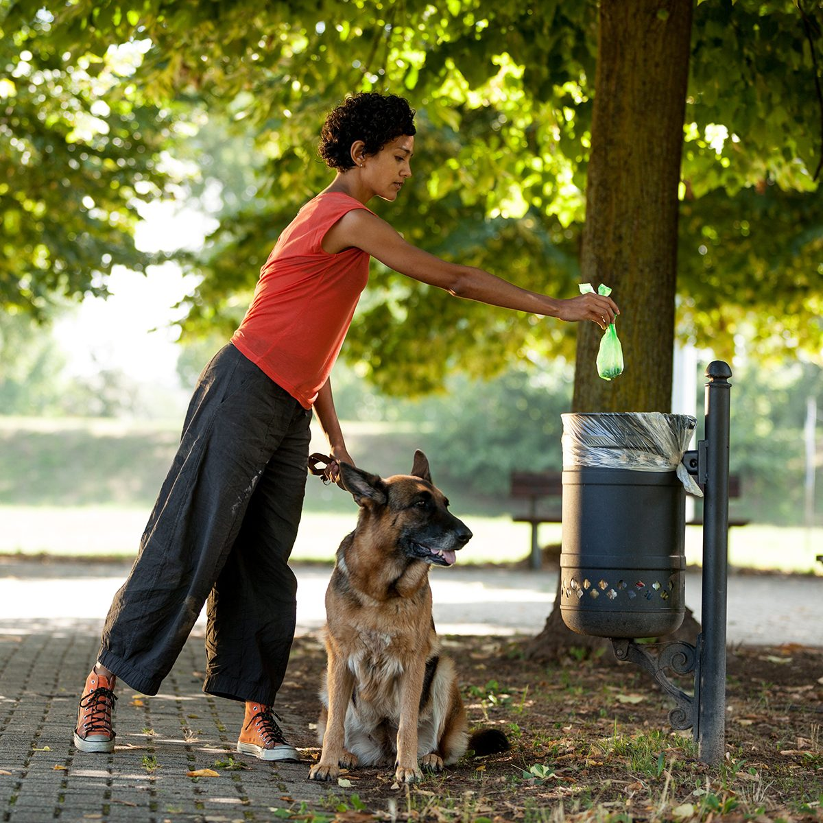 Pet owner throwing out dog poop in park