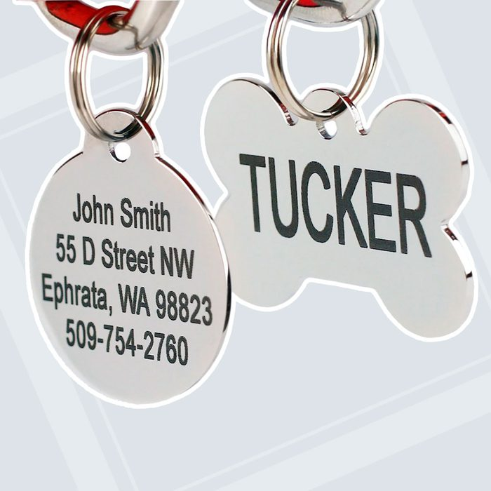 GoTags Stainless Steel ID Tag