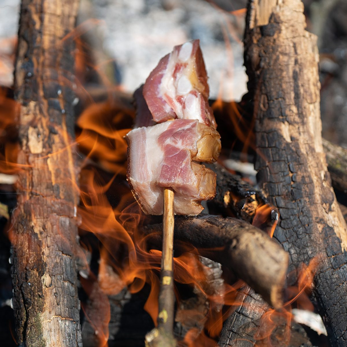 bacon baking spit on fire barbecue camping in the nature stock photo