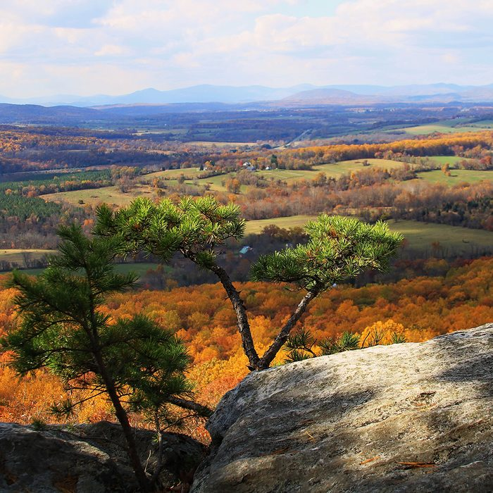Fall Foliage, Bull Run Mountains, Loudon Valley, Fauquier County, Virginia