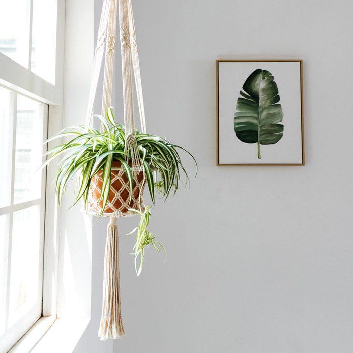 Mkono Macrame Hanging Planter Basket Plant Hanger Home Decor, Up to 8 Inch Flower Pot