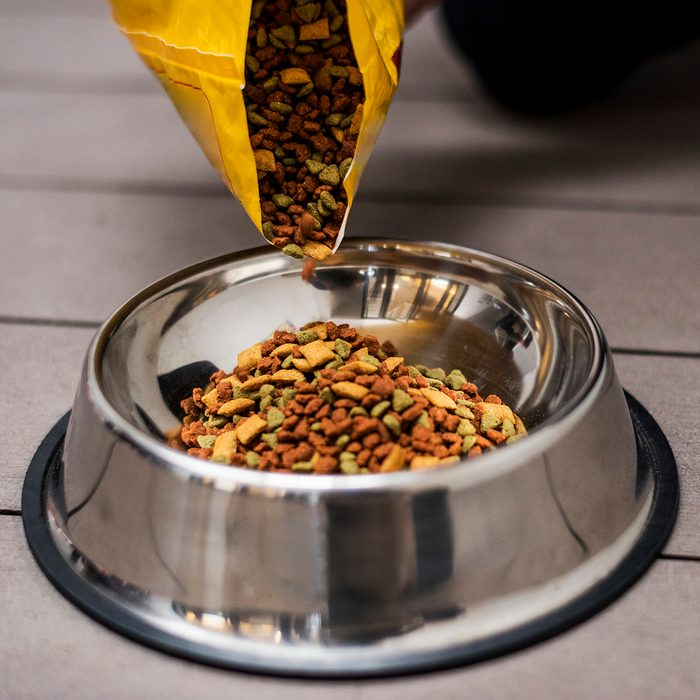 Pouring pet food into a bowl