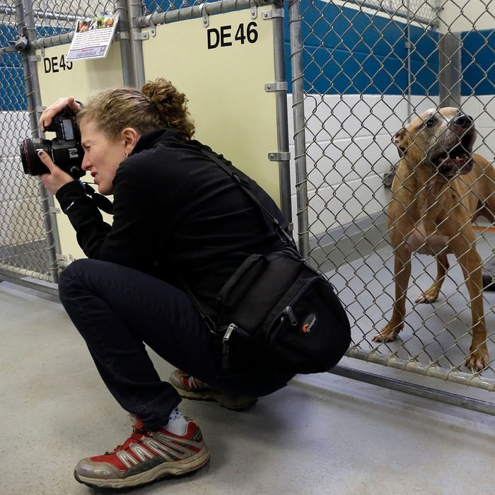 Person kneeling down taking photos in a shelter