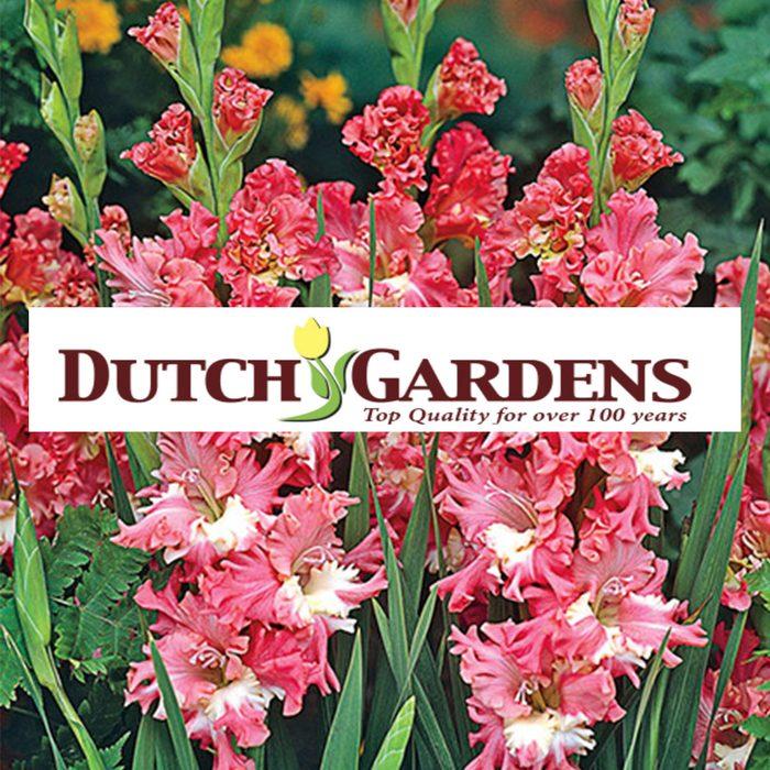 dutch gardens