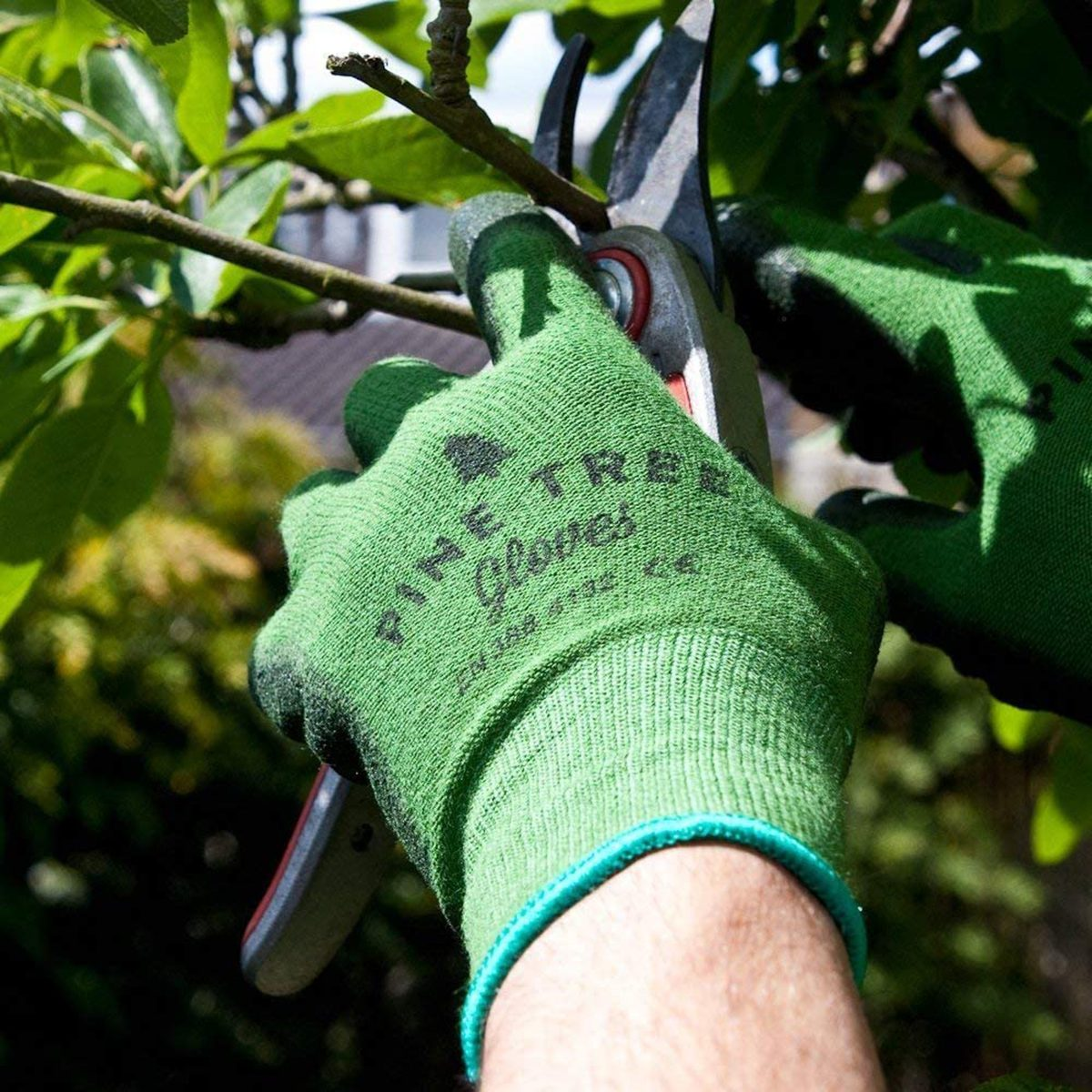 Man wear work gloves while pruning
