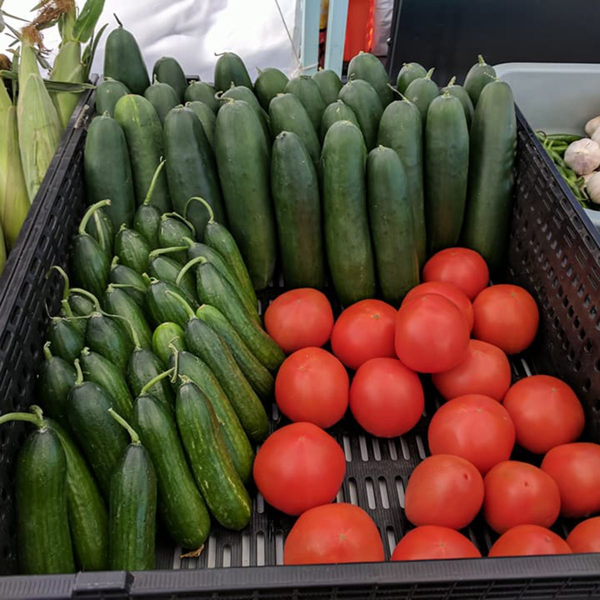 Arizona Carefree Farmers Market