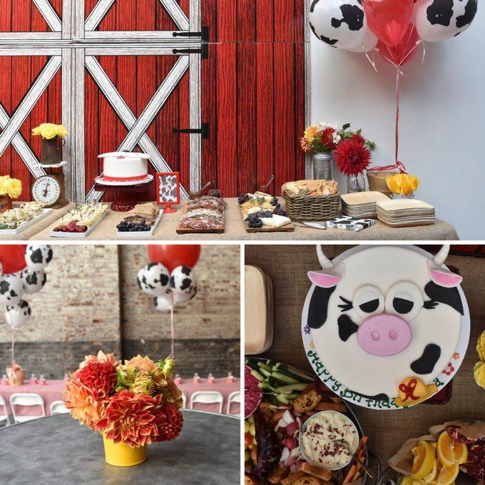 barnyard first birthday party ideas