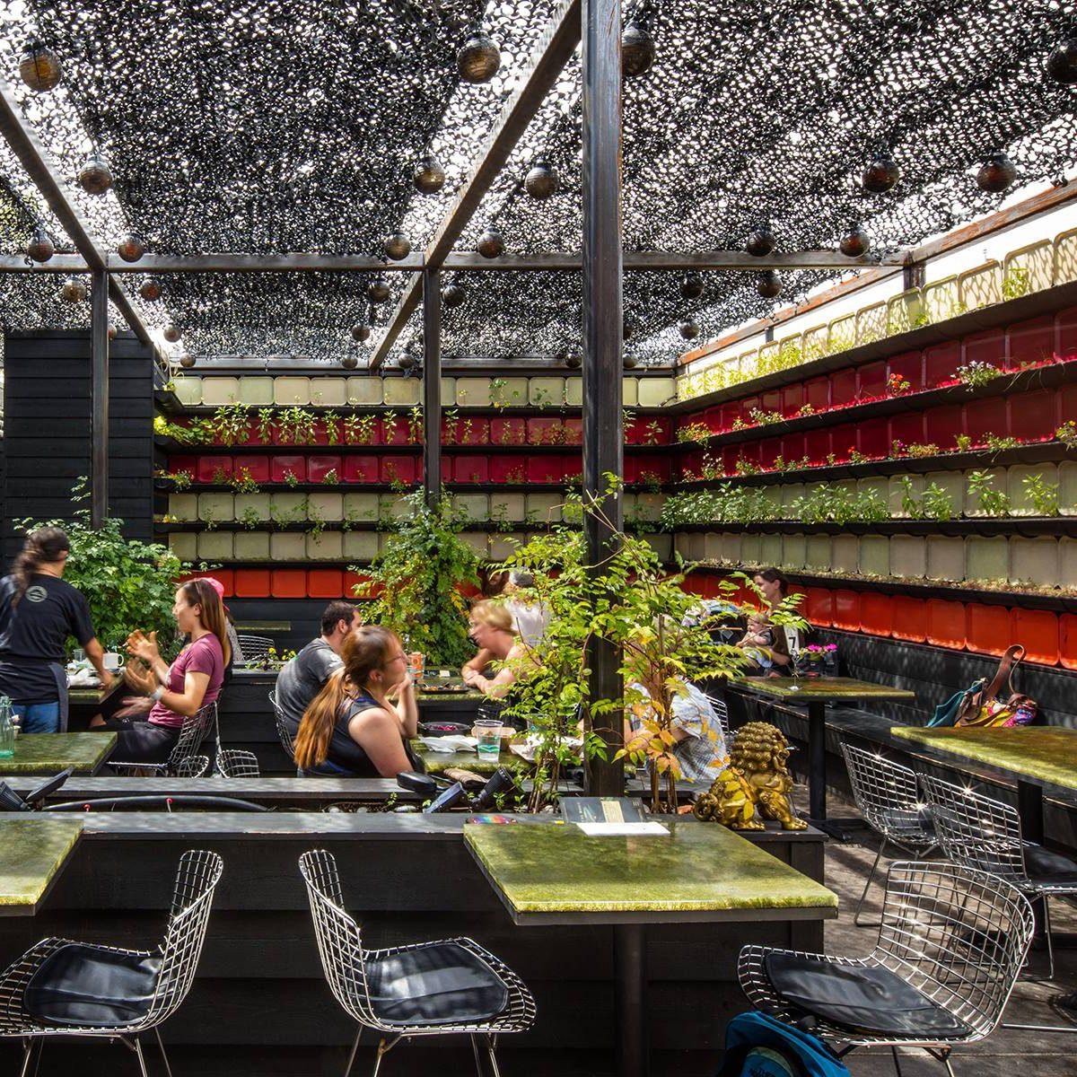 The best vegetarian/vegan cafe in Colorado
