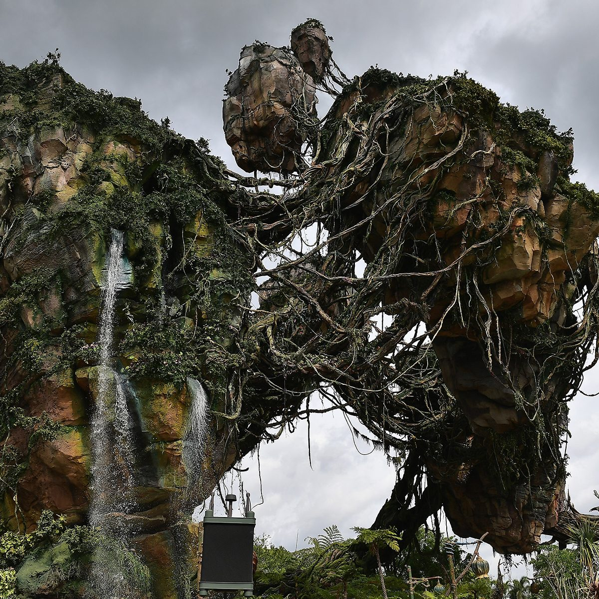ORLANDO, FL - MAY 23: General views the Pandora The World Of Avatar Dedication at the Disney Animal Kingdom on May 23, 2017 in Orlando, Florida. (Photo by Gustavo Caballero/Getty Images)