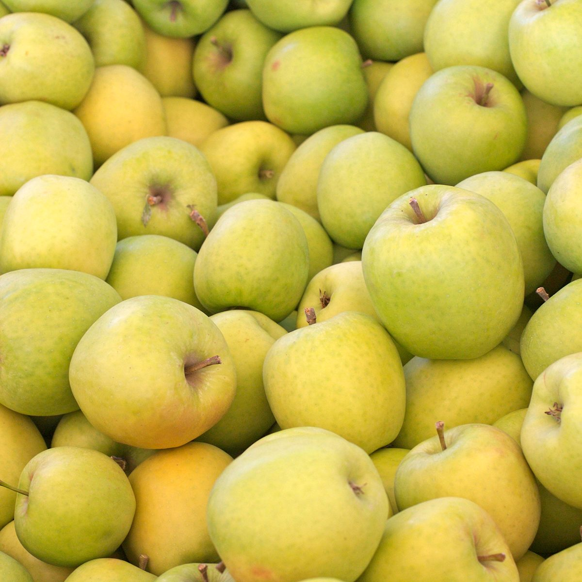 Crispin (also known as Mutsu) apples