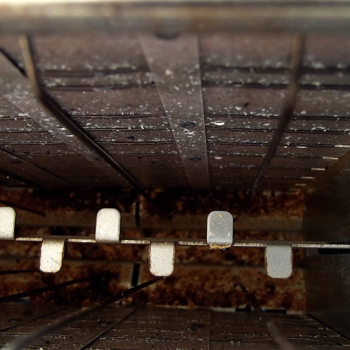 Close up of the inside of a used toaster with grill and crumbs.