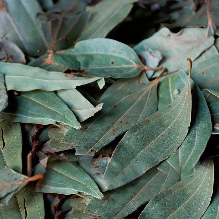 indian spices Full Frame Of Bay Leaf. (Photo by: Madhurima Sil/IndiaPictures/Universal Images Group via Getty Images)