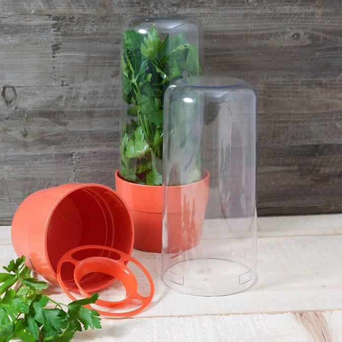 home organization Symple Stuff Kestner Herbs And Salad 2 Container Food Storage Set