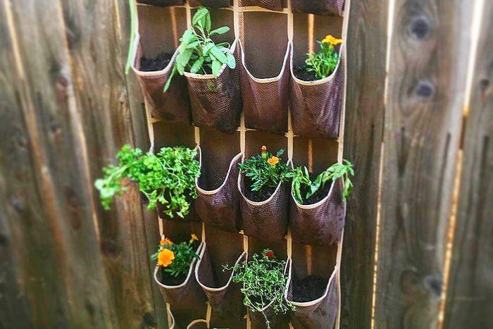 Hanging Herb Garden Hack