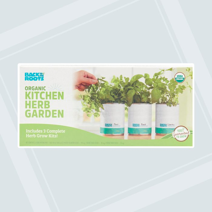 world market patio Back To The Roots Garden In A Can Herb Grow Kit 3 Pack