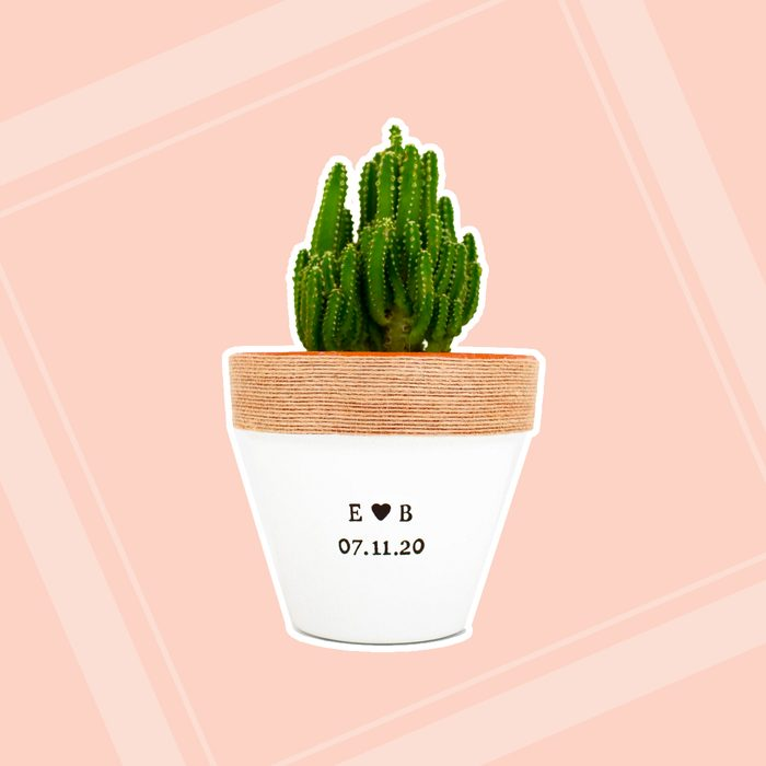engagement party gifts Plant Pot Indoor Planters Custom
