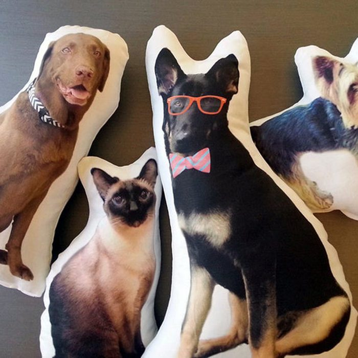 gifts for college students Custom Dog Pillow College Student Gift