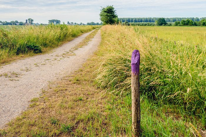 Purple Fence Meaning; Purple Fence Laws