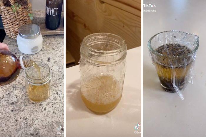 Showing How to Get Rid of Gnats Indoors with Dish Soap and Vinegar