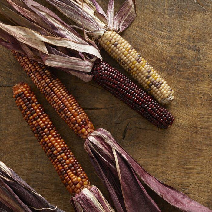 Flint corn