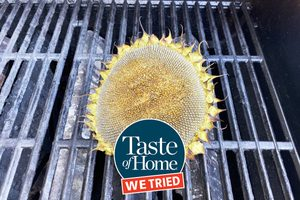 We Made a Grilled Sunflower Head—and We Have No Regrets